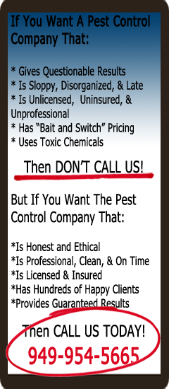 Pest Control of Orange County Sidebar